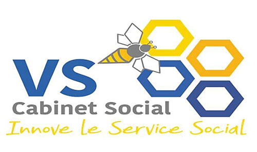 logo cabinet de conseil VS