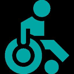 Acces handicap local vae- bilan de competence (capture competence)